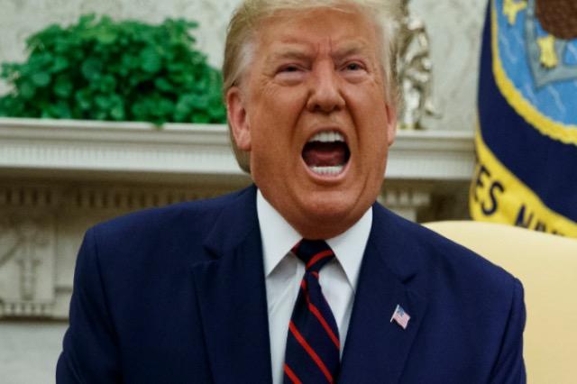 """Trump """"del nga shpella"""": Unë i fitova zgjedhjet"""