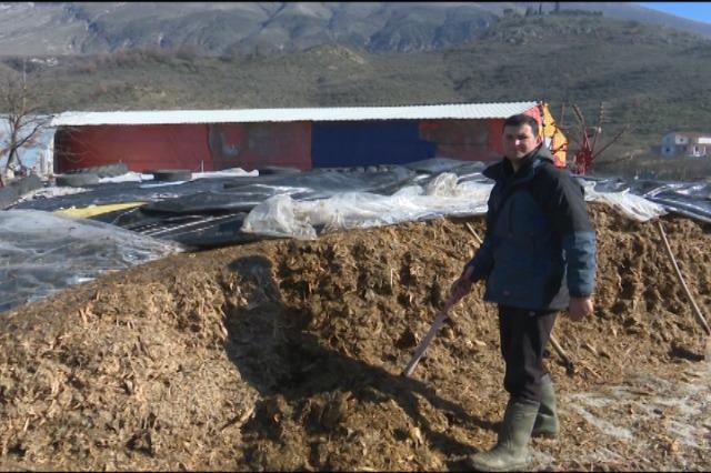 Ajet Kroi , i riu nga Nepravishta që jep mesazhin për punësimin në  bujqësi.
