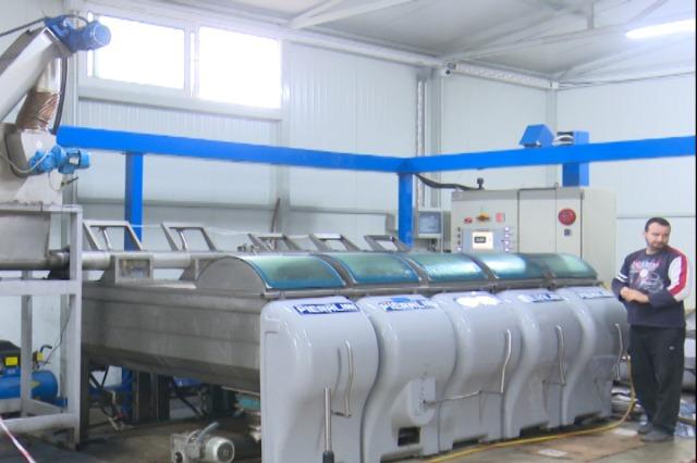 Himarë, shtohen fabrikat e përpunimit të ullirit