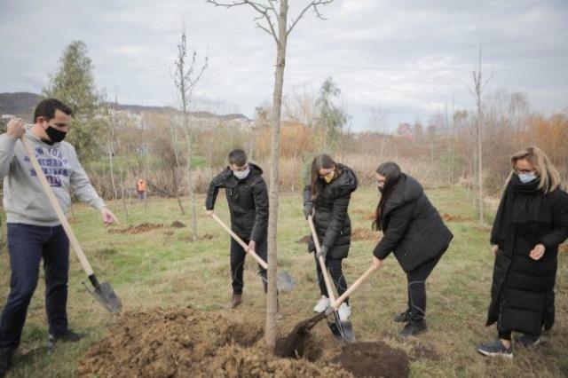 Të rinjtë surprizojnë mikeshën e tyre, në vend të festës për ditëlindje i dhurojnë pemë