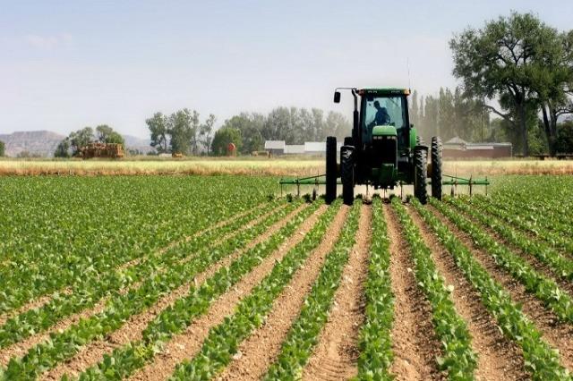 Kryeministri Rama jep lajmin e mirë për fermerët: Aplikoni në e-Albania për të marrë falas naftën