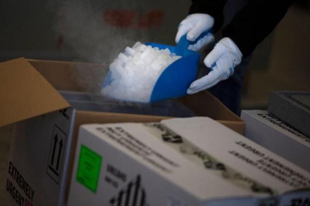 Guinea fillon vaksinimin kundër Ebolës