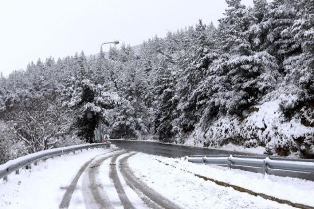 """Greqi – """"Medea"""" ndalon qarkullimin në autostradën Larisa-Athinë"""