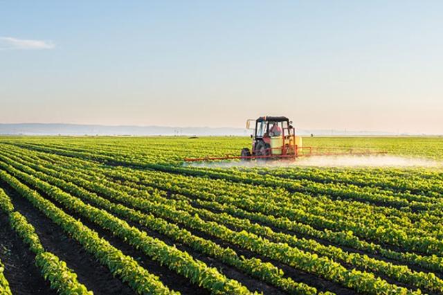 Skema e naftës formalizon bujqësinë, mbi 61 mijë fermerë të regjistruar me NIPT