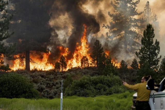 SHBA – Viktima dhe mijëra hektarë pyje të djegur pas temperaturave ekstreme