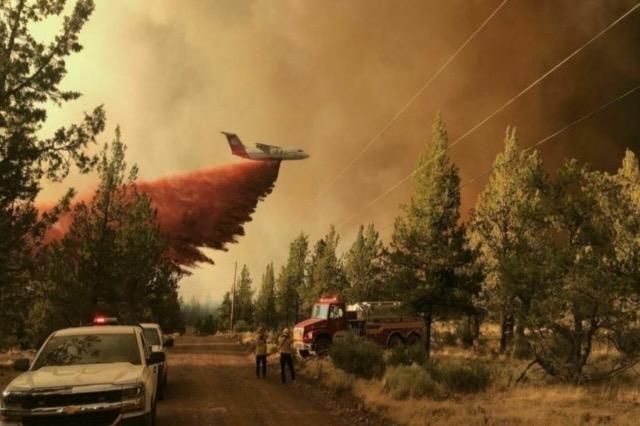 """Në luftë me """"ferrin"""", në SHBA shkrumbohen 1 milion hektarë tokë"""