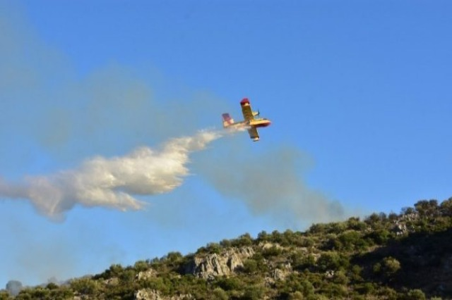 Greqi,  zjarret mbajnë në ankth vendin, një avion rrëzohet