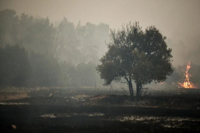 Zjarret në Greqi, zjarrfikësit luftojnë me flakët në Vilia për ditën e katërt radhazi