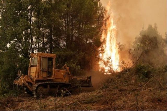 Greqi, frikë nga mbërritja e zjarreve në qytete