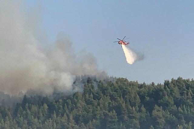 Greqi - Zjarret detyrojnë evakuimin e banorëve të qytetit antik të Olimpit dhe zonave përreth