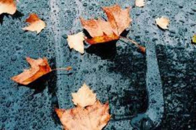 Rikthehen rreshjet por temperaturat rriten, muaji shtator mbyllet me shira