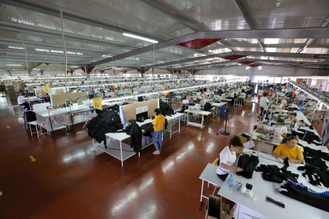 Shansi për Shqipërinë, prodhimi që mund të nxitet nga kriza e çmimeve