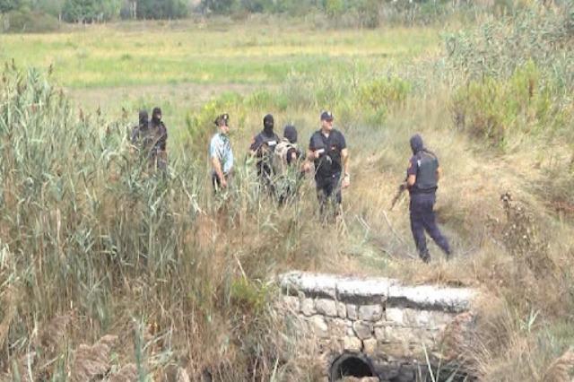 Policë të përfshirë në kultivimin e kanabisit, SPAK lëshon 20 urdhër-arreste për grupin kriminal në Lezhë