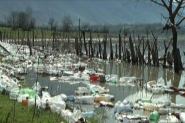 Aksion për pastrimin e liqeneve të Fierzës dhe Komanit